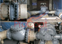 Pumps-Valves Under ProCoat Protection System